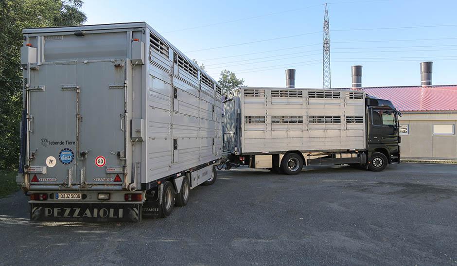 Viehhandel